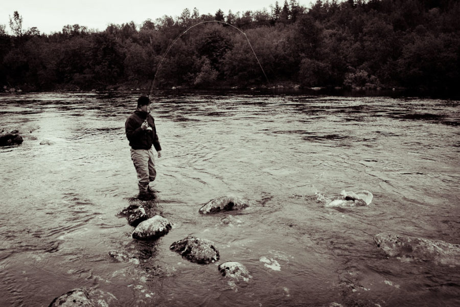 Dry Fly Fishing for Sea Trout