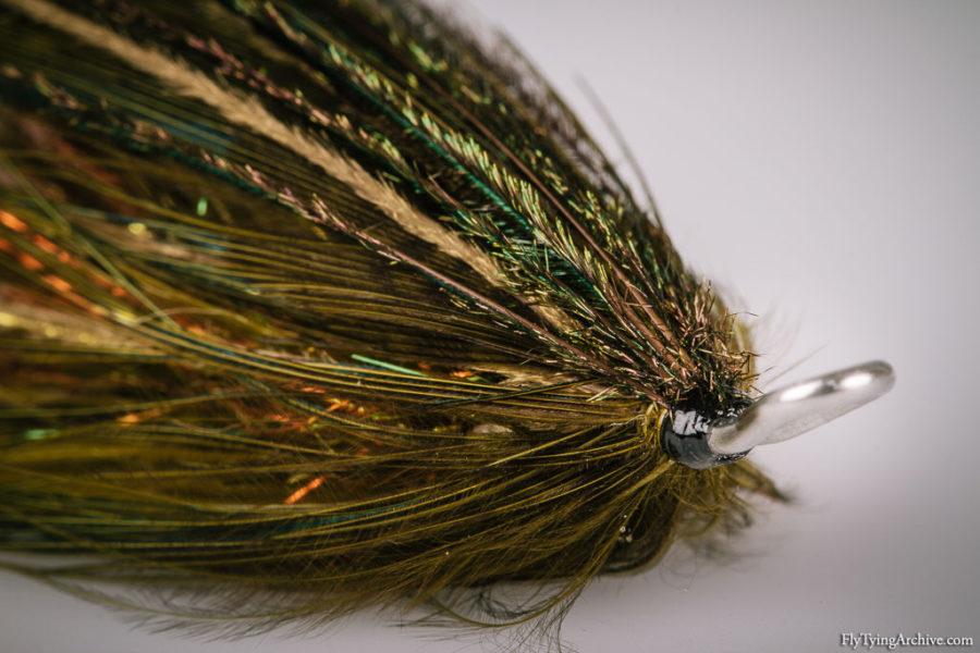 Olive Peacock Intruder