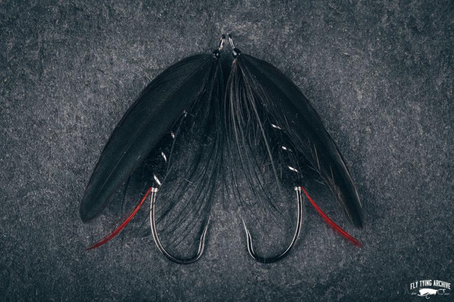 Raven from Brad Burden