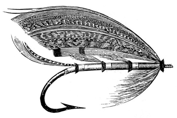 customsalmonfly